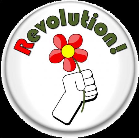 Revolution Flower buttonpic