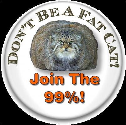 FatCat buttonpic